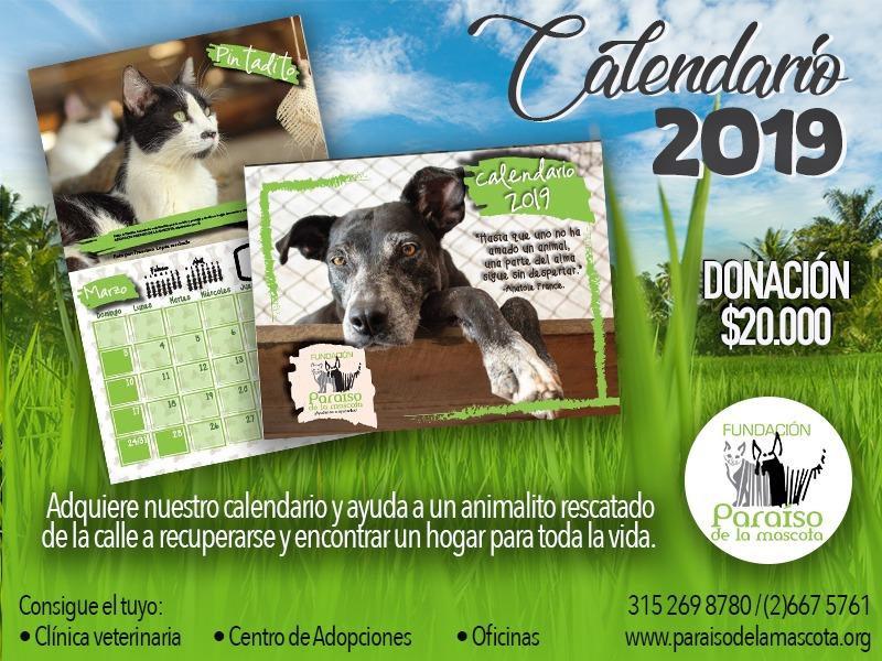 Calendario 2019 Fundacion